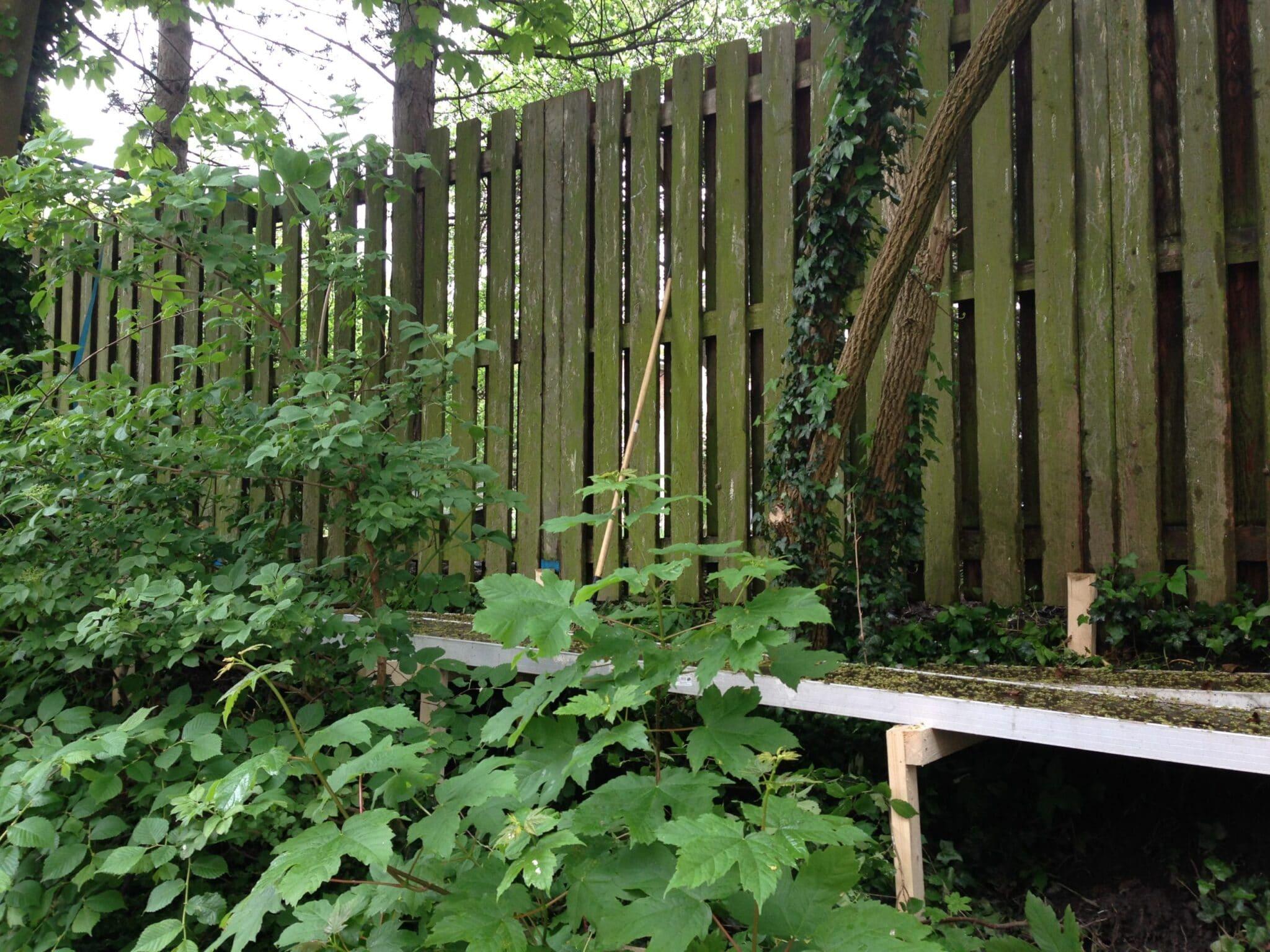 renovering-hegn